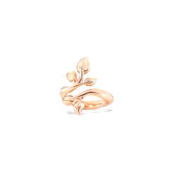 Tamara Comolli - Fairy Ring